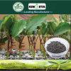 Kingeta promove o estrume orgânico NPK 8-6-18 do fertilizante composto de Biohar da fotossíntese