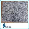 Azulejo de suelo gris del granito de Georgia