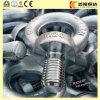 Augen-Schraube des Kohlenstoffstahl-DIN580 M24