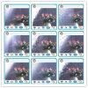 La radura o colorato può fiorire il vetro di reticolo di Nahsiji Karatachi