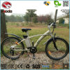 Venda por grosso de 250W Electric Mountain Bike MTB aluguer