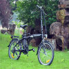 Chinese 20pouce vert de vélo électrique pliant d'alimentation 36V 250W