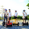 Comercio al por mayor en dos ruedas Scooter eléctrico de equilibrio de auto en venta