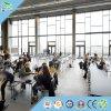 Het Materiaal van het plafond voor het Materiële Akoestische Comité van het Comité van de Muur van het Plafond Decotation