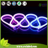 12V 10*20mm Flat Digital RGB LED Neon Light con SMD5050