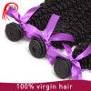Cabelo natural Curly Kinky humano agradável da qualidade 7A Barzilian Corlor