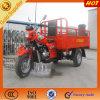 Triciclo motorizado abierto del cargo de la venta caliente en Suráfrica