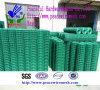 PVC beschichtete geschweißte Maschendraht-Fabrik