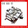 中国の製造所のプラスチック注入型(MLIE-PIM019)