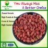 Peau rouge 60/70 arachides Kernerls avec 25kg sac sous vide de l'emballage
