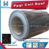 Bobina de aço principal de PPGI/PPGL (SGCC, DX51D, ASTM, EN10142, S350GD)