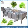 De Plantaardige Wasmachine van de Wasmachine van het Fruit van de salade