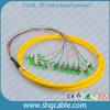 12 Core FC / APC-9 / 125um G652D Sm Bunch Fibre optique Pigtail