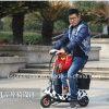 OEM que dobra barato trotinette Handicapped da mobilidade elétrica do assento dobro da roda para adultos