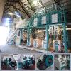 Stark/weicher Weizen-Hartweizen, der für die Herstellung der Mehl-Korn-Tausendstel-Maschine prägt