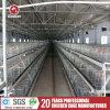 Jaula del pollo de la granja avícola de la jaula de la parrilla del bajo costo de la alta calidad