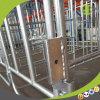 Type stalle galvanisée à chaud de stalle de gestation de ferme de porc de gestation