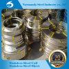Bandes d'acier inoxydable d'ASTM 439 pour la couverture de réservoir d'eau