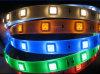 L'UL RGB/3528 di RoHS del CE impermeabilizza l'indicatore luminoso flessibile di IP67 DC12V/24V il LED Strip/LED