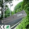 einfache 80W installieren integriertes Solarstraßenlaternealles in ein Solargarten-Licht für Außenseite