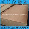 Bintangor Puerta de 2,7 mm de madera contrachapada de la piel