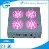 Le nova S4 LED élèvent des lumières pour l'élevage d'usines d'intérieur