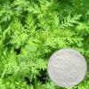 자연적인 약쑥 추출물 (Artemisinin 99%HPLC)