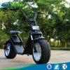 Harley 60V 1200W 뚱뚱한 타이어 전기 스쿠터 Citycoco 전기 스쿠터