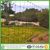 Recinzione agricola galvanizzata ad alta resistenza dell'azienda agricola