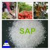 Polímero de absorción de agua líquida/agricultura utiliza SAP
