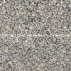 Natural Polished Stone Grey Granite Floor Tile per Kitchen Flooring