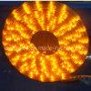 Strisce flessibili del LED (bianco di AL-5050-30/60LED/M-Warm)