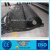Réseau de renfort d'asphalte de Geoglas