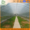 Соединение на массу пленки для мульчирования крышки для одного/Multi-Span туннеля парниковых