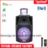 Feiyang/Temeisheng/Kvgの新式の普及した大きい力の球ライトが付いている再充電可能なBluetoothのスピーカー---La015D