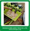 Machine de semoir d'ail de planteur d'ail de rangées de la haute performance 5