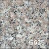 Platte (G636)