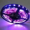 LED Ribbon Light Strip Light (EL-NS5050PI30)