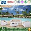현대 인공적인 옥외 정원 안뜰 가구 고리 버들 세공 소파 (TG-3025)