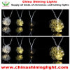 유일한 디자인 다채로운 LED 크리스마스 불빛