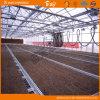 다중목적 Venlo 구조 다중 경간 유리 온실