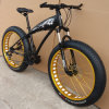 2015 neues Model 26*4.0 Mountain Bike/Bicycle mit FAT Tyre Okm-121