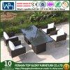 Tableau dinant de jardin de modèle moderne de rotin extérieur de meubles et Chairset (TG-JW56)