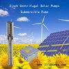 5En 1500W 2HP CC centrífugas bomba de riego Sytsem Submersibel Solar