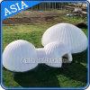 テント、屋外の膨脹可能なイグルーのドームの芝生のテントを広告する膨脹可能なイグルー