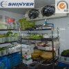 Restaurant le refroidisseur d'un réfrigérateur chambre froide