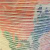Поли напечатанная Crepe ткань Georgette шифоновая для платьев