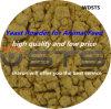 Voer Yeast Powder voor Animal (rang Feed met 55% proteïne)