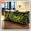 Parete falsa artificiale dell'erba della pianta verde del fornitore della Cina