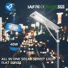 40W indicatore luminoso di via solare del giardino LED con il comitato solare della batteria